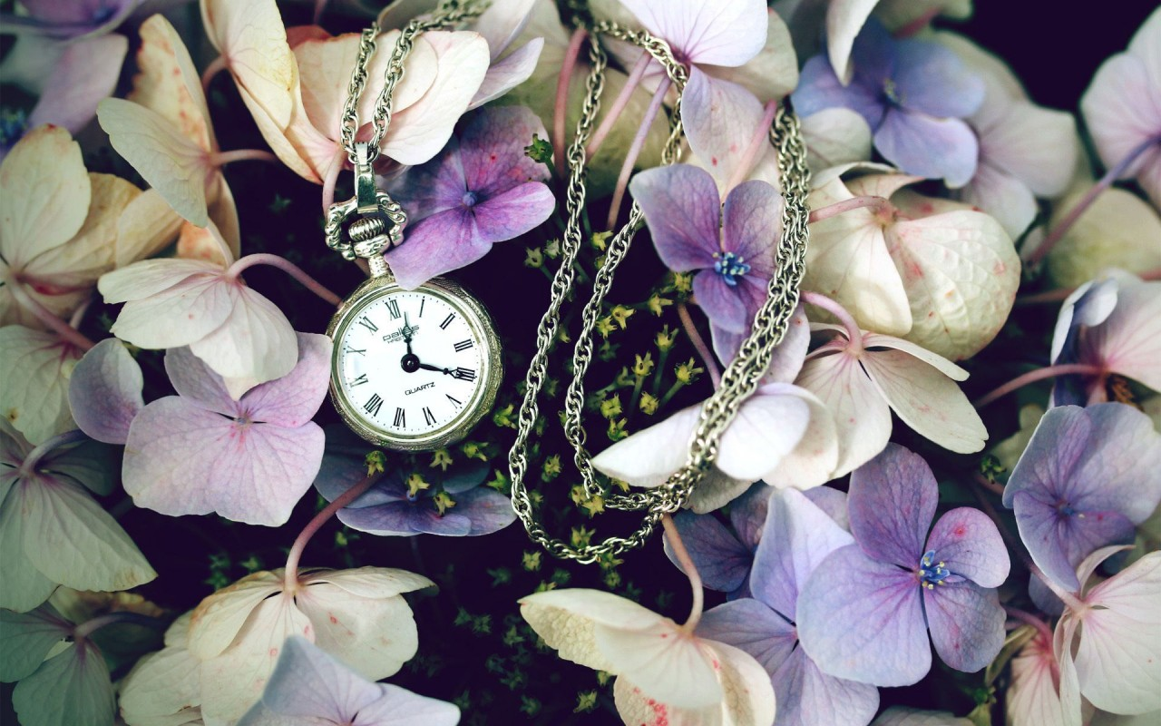 Pocket Watch Flowers Wallpapers