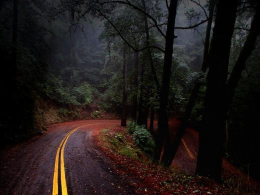 Fairfax Bolinas Road